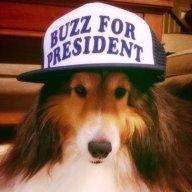 Buzz4President